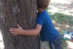 Enfants-arbre-3